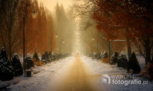 Park Zdrojowy w mglisty dzień