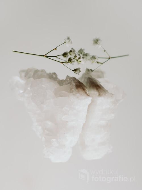 Fotografia powstała przy okazji tworzenia projektu opowiadającym o kolorze białym. Jest to barwa, której postrzeganie zależy od wielu czynników osobniczych, a nawet od wieku czy stanu psychofizycznego odbiorcy. Ważne jest też otoczenie koloru. W ramach projektu powstała seria fotografii przedstawiająca zestawienia białych przedmiotów o różnym odcieniu.