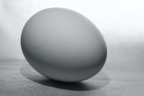 Czarno-białe jajo leżące i oczekujące.