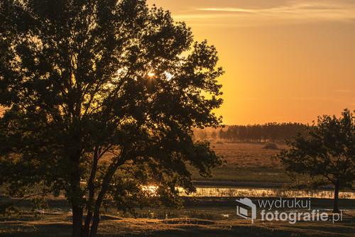 Zdjęcie zostało zrobione o zachodzie słońca w Biebrzańskim Parku Narodowym. Był to przepiękny majowy zachód słońca.