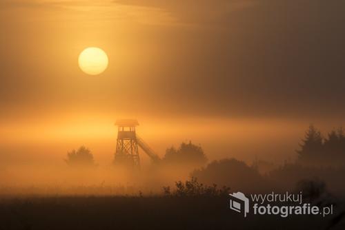 Zdjęcie zrobione w Biebrzańskim Parku Narodowym. Był to magiczny wschód słońca, gdyż mgła sięgała aż do nieba :)  Był to wrześniowy poranek. W tle widać wieżę widokową.
