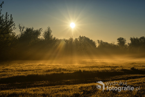 Wschodzące słońce. Zdjęcie zrobione w piękny i mglisty poranek przed godziną 5 am.