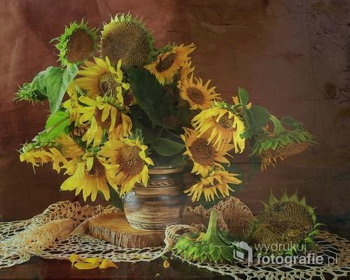 słoneczniki w martwej naturze