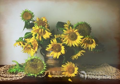 martwa natura ze słonecznikami