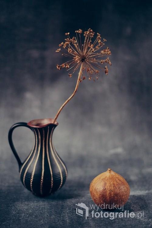 martwa natura w jesiennym klimacie z dynią i kwiatem czosnku