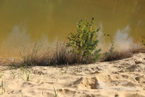 krajobraz nad wodą