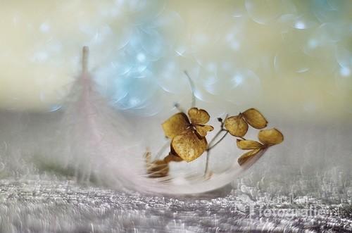 impresja jesienna