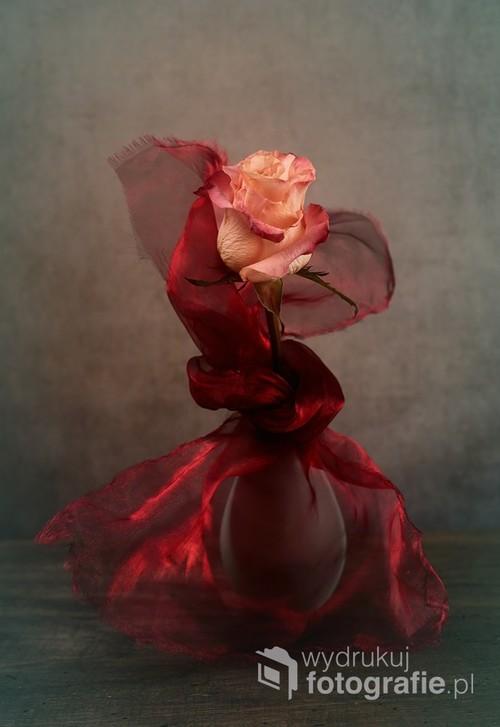 martwa natura z różą