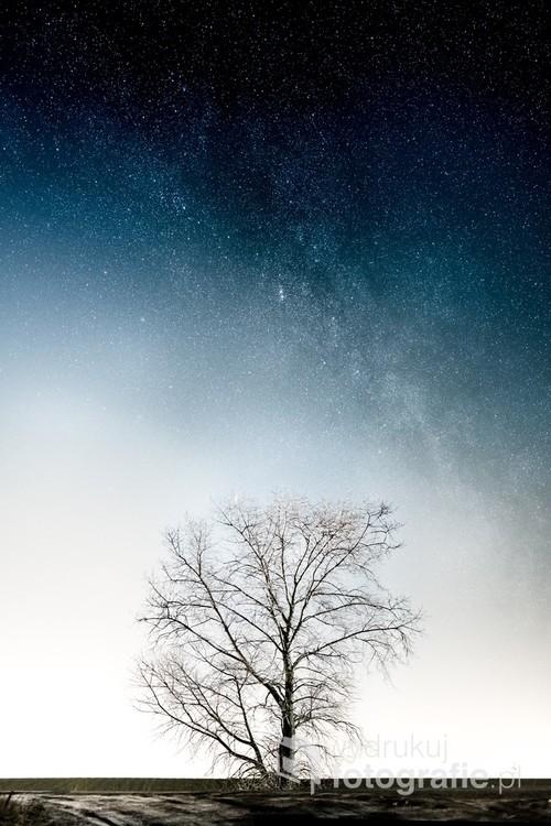 Fragment Drogi Mlecznej (widoczna wyraźne Podwójna Gromada w Perseuszu) nad samotnym drzewem. Panorama 6 kadrów, 16. lutego 2018, godzina 20:29-20:33, Wełnica k. Gniezna