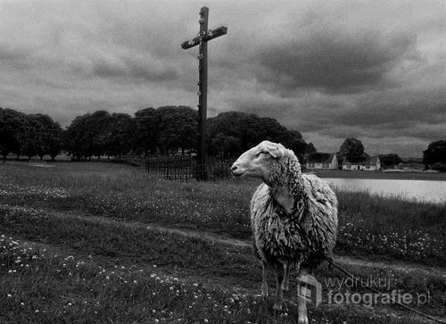 POLAND 1997 fotografia analogowa