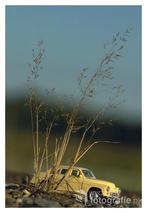 Fotografia przedstawia miniaturową wersję samochodu Warszawa, która została sfotografowana niedaleko Poznania na jednych z łąk. Dodatkowym atutem fotografii jest to, że została zauważona przez śp. Leonarda Karpiłowskiego, który na łamach czasopisma Foto Kurier dokonał analizy fotografii.