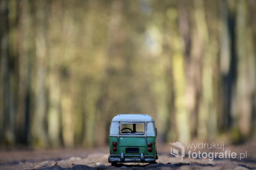 fotografia przedstawia metalowy model auta, został umieszczony na jednej ze ścieżek rowerowych w Wielkopolskim Parku Narodowym k. Poznania.