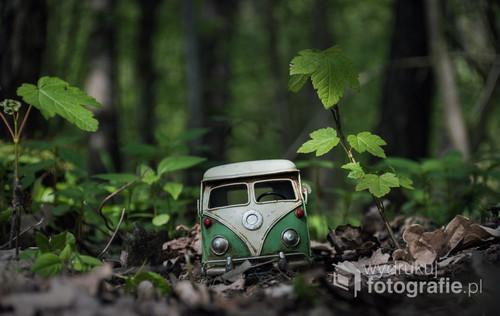 fotografia przedstawia model metalowego auta, fotografia została wykonana w lesie.