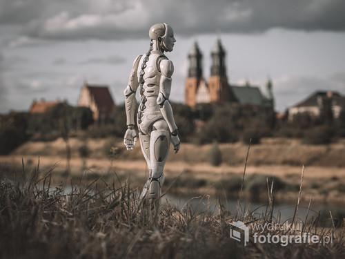 Fotografia powstała w Poznaniu, w tle widać katedrę.