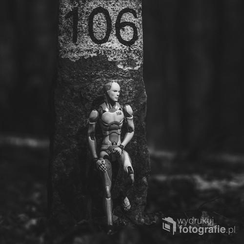 fotografia powstała spontanicznie podczas spaceru po lesie. Mając przy sobie aparat i figurkę musiałem skorzystać i z postawionego słupka w lesie ;)