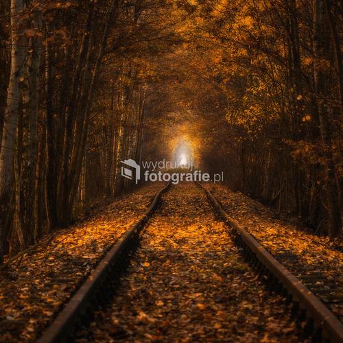 Tunel Miłości