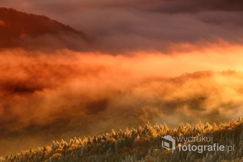 Mgły oświetlone światłem wschodzącego słońca, Bieszczadzki Park Narodowy, Bieszczady Zachodnie.