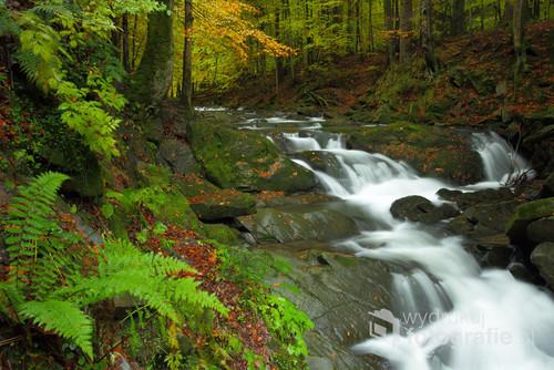Wodospad Szepit na potoku Hylaty, Bieszczady Zachodnie