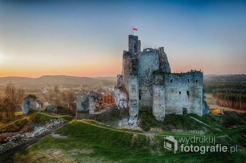 Fotografia przedstawia ruiny zamku w Mirowie.