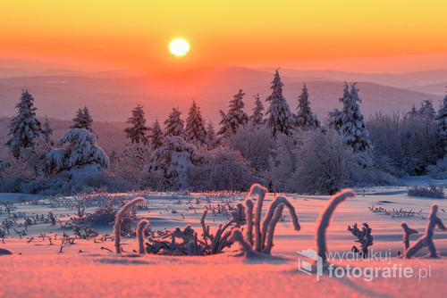 Był to bardzo Mroźny poranek. Na termometrze można było zobaczyć -24*C. Przy takiej temperaturze drzewa wyglądają jak z bajki. Wszystko jest pięknie oblepione śniegiem :)