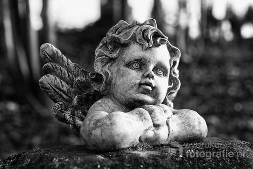 Fotografia przedstawia rzeźbę aniołka na jednym z dziecięcych nagrobków na cmentarzu w Bolesławiu (gm. Bolesław, pow. olkuski)