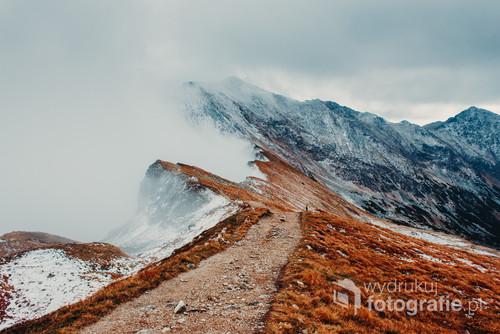 Siwy Zwornik, Tatry Zachodnie
