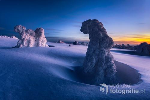 Zdjęcie przedstawia oblodzone drzewa. Zostało zrobione w Czeskich Jesenikach na szczycie góry Pradziad (1491n.p.m.). Świeży śnieg, bezchmurne niebo oraz -15 stopniowy mróz sprawiły, że pojawiały się niesamowite kolory.   Zdjęcie zostało wyróżnione w A-Z Top Photo Magazine