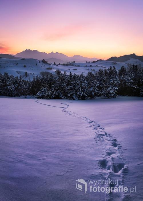 Zdjęcie zostało wykonane spod Wysokiego Wierchu. Po zachodzie słońca niebo nad Tatrami nabrało różowo-fioletowo-złotych barw.