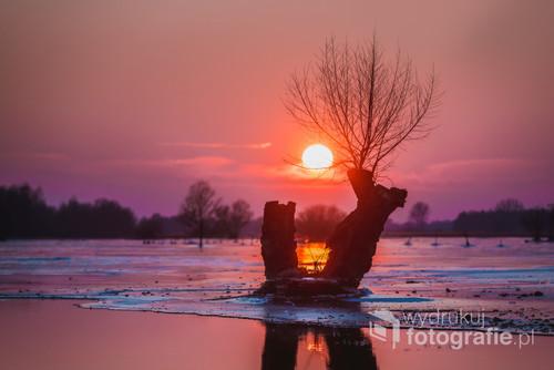 Zimowy zachód słońca nad rozlewiskiem Warty