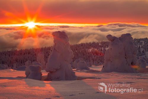 śnieg, drzewa, zachód słońca, chmury, słonce, kolor, las