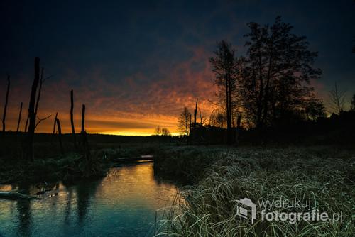 Wschód słońca w parku Łysy Młyn
