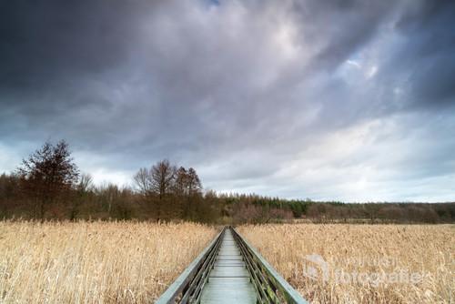 Drewniany most w Parku Leśny Młyn