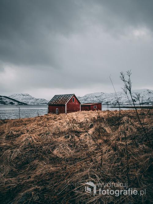 Czerwona chatka nad wodą w Norwegii. Okolice wyspy Senja