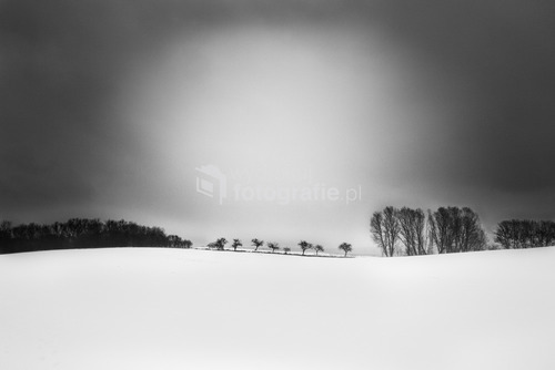 Krajnik Górny, tuż przy granicy polsko-niemieckiej, zima 2013