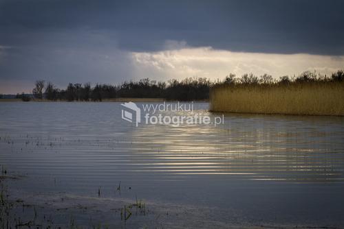 rozlewiska Narodowego Parku Doliny Dolnej Odry, wiosna 2012