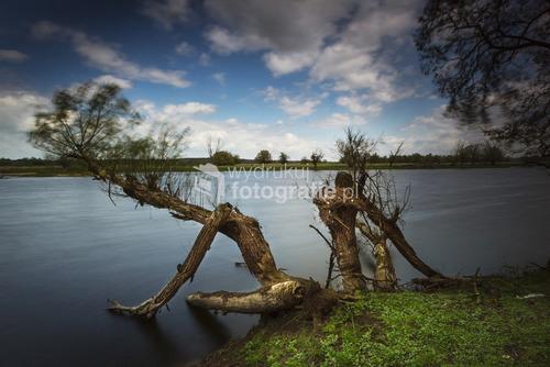 Rzeka Odra, polska strona, okolice miejscowości Piasek