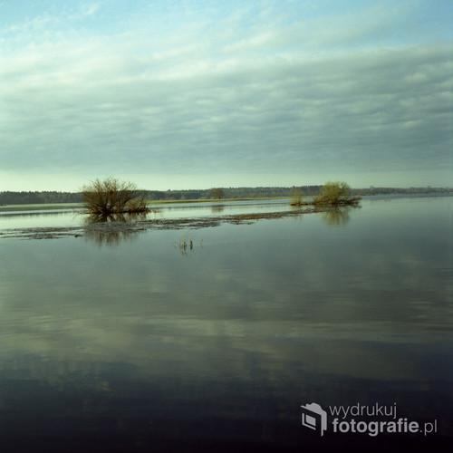 """Biebrzański Park Narodowy, kwiecień 2017  Fotografia wykonana o wschodzie słońca, analogowym, średnioformatowym aparatem na filmie FujiFilm NS 160PRO  Jako część cyklu nagrodzona w: - INTERNATIONAL PHOTOGRAPHY AWARD 2017 (IPA 2017) – wyróżnienie w kategorii """"Nature-Tree"""" oraz  """"Fine Art: Landscape"""".  - NEUTRAL DENSITY PHOTOGRAPHY AWARDS 2017 (ND AWARDS 2017) – wyróżnienie w kategorii """"Nature: Other"""".  - KONKURS NATIONAL GEOGRAPHIC POLAND """"FOTOGRAFICZNE PORANKI"""" 2017 – finalista i uczestnik warsztatów fotograficznych."""