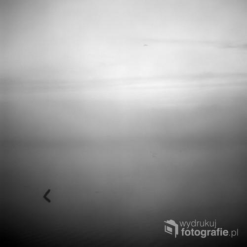 Kwiecień 2018 Wieliszew, woj. mazowieckie  Fotografia wykonana analogowym średnioformatowym aparatem na filmie FujiFilm NS 160PRO