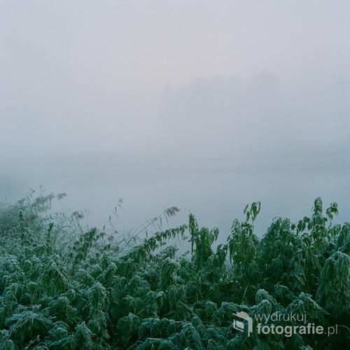 Listopad 2019 Wieliszew, woj. mazowieckie  Fotografia wykonana o wschodzie słońca, analogowym średnioformatowym aparatem na filmie FujiFilm NS 160PRO Fotografia jest częścią nagrodzonej serii w międzynarodowym konkursie fotograficznym FAPA 2019 (Fine Art Photography Awards)