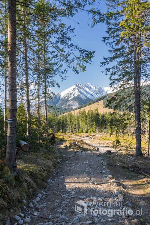 Zdjęcie wykonane późną wiosną na szlaku na Rusinową Polanę widoczne na środku zdjęcie. W dali widoczne szczyty Tatr Wysokich.