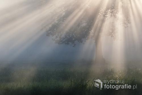 Zdjęcie wykonane na Kurpiach, podczas pleneru fotograficznego.