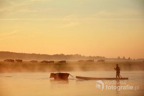 Zdjęcie zrobione nad rzeką Biebrza o poranku.