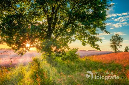 Zachód słońca późnym latem niedaleko Koszalin