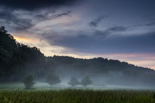 Uwielbiam fotografię krajobrazową za jej niepowtarzalność, za przepiękne spektakle natury, sezony burz czy duże wahania temperatur w ciągu dnia. Koniec lata, początek jesieni to okres gdy różnice temperatur są szczególnie widoczne, wtedy właśnie rankiem i wieczorem możemy obserwować jak mgła spowija pola, wychodzi z lasów czy unosi się nad wodą.