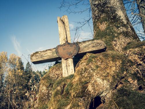 Bieszczady - Legendarny, bardzo stary krzyż trwający w uścisku drzewa. Krzyż znajdował się na cmentarzu grekokatolickim w Łupkowie i był jednym z dwóch symboli tego miejsca. Niestety krzyża już nie ma...