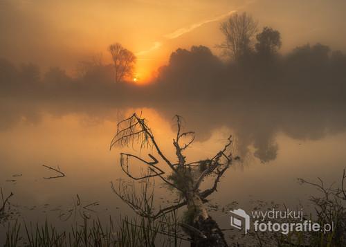 Zdjęcie przedstawia wschód słońca nad starorzeczem rzeki Bug w mglisty październikowy poranek.