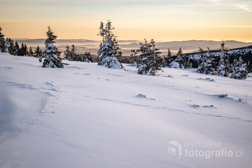 Zdjęcie wykonane zostało tuż po wschodzie słońca, niedaleko Szrenicy. Mgła spowijająca w tym czasie kotlinę Jeleniogórską została miękko podświetlona i nabrała ciekawego, lekko pomarańczowego odcienia. Gładka, idealnie czysta warstwa zmrożonej pokrywy śnieżnej w przedniej części fotografii dobrze komponuje się z estetyką całego kadru.