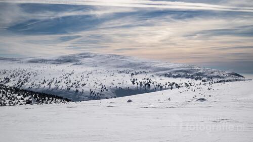 Zdjęcie powstało w trakcie bardzo słonecznego dnia, w Karkonoszach. Wielobarwne niebo, z wieloma szczegółami oddziela nieco spokojniejszą, dolną część fotografii. Słońce będące wysoko nad horyzontem sprawiło, że znajdująca się w centralnej części kadru roślinność wyjątkowo mocno kontrastuje z nieskazitelnie białym zboczem.