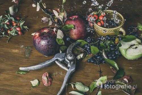 Dary sadu sfotografowane jako martwa natura. Na stole znalazło się miejsce na garść aronii, kilka jabłek, czerwona jarzębina, a także sekator, który posłuży do ścięcia gałązki.