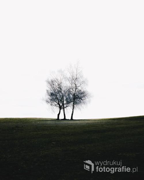 Fotografia trzech samotnych zdjęć. Polska
